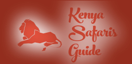 Kenya Safaris Guide